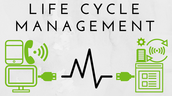 Life Cycle Management (1).png